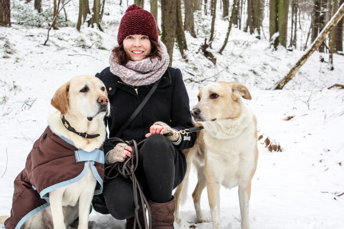 Anja Kruse, Tierärztin, vetdogs, vetdogs-dogs