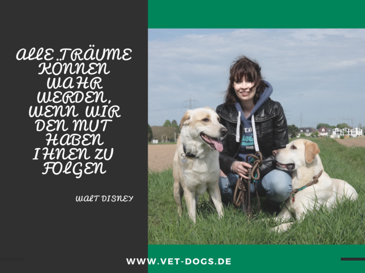 Vet-dogs.de, vetdogs, Traumberuf Tierarzt, Tiermedizinstudium