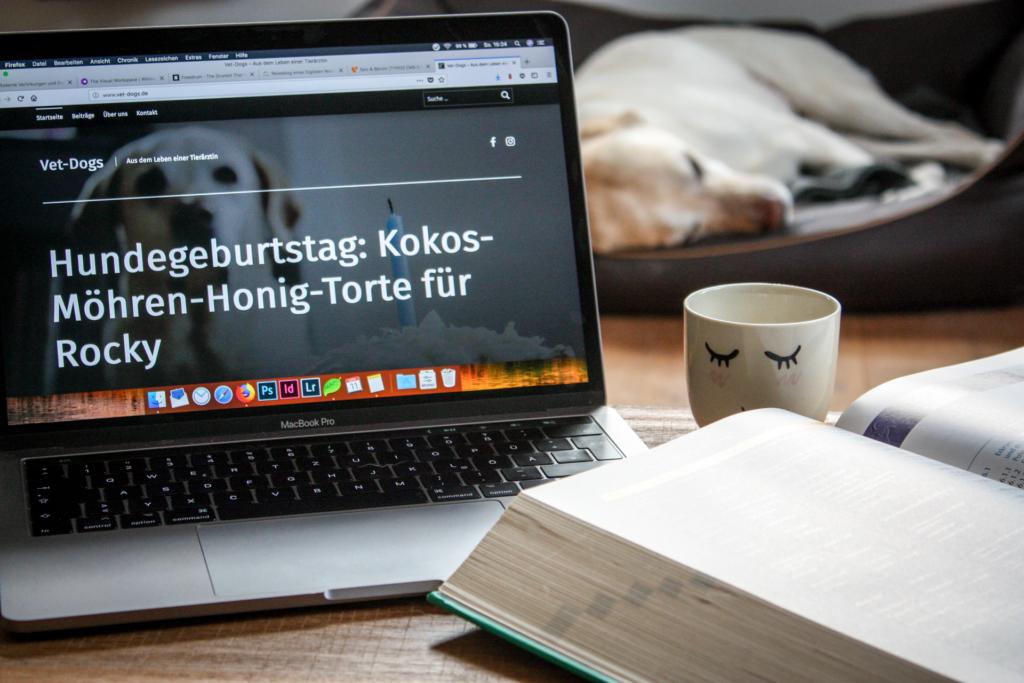 Du möchtest Tiermedizin studieren, weißt aber nicht wie? - Mein Weg zum Traumstudium, www.vetdogs.de, www.vet-dogs.de, online Tierarzt