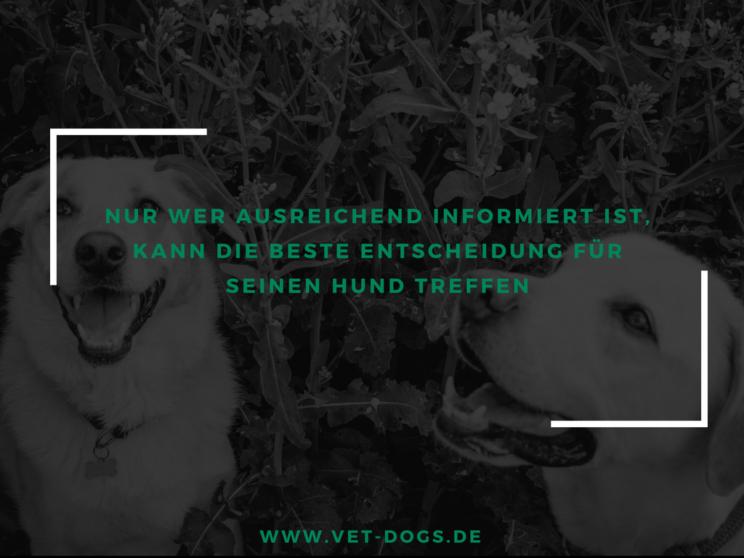 Vet-dogs.de, vetdogs.de, über uns