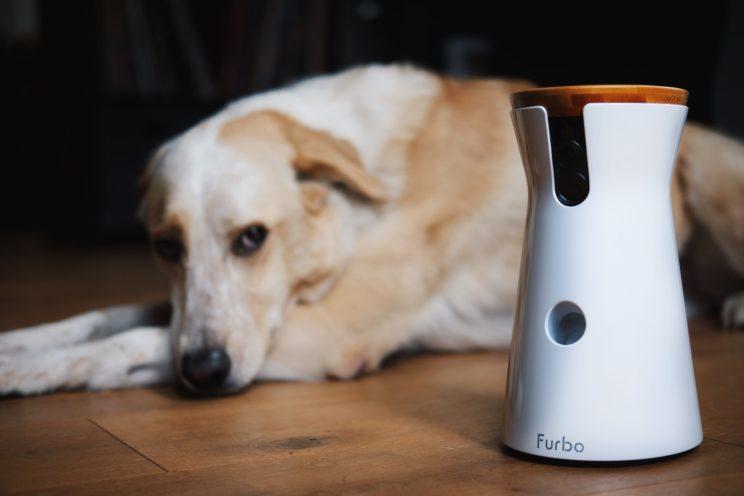 Furbo Produkttest Vet-dogs.de