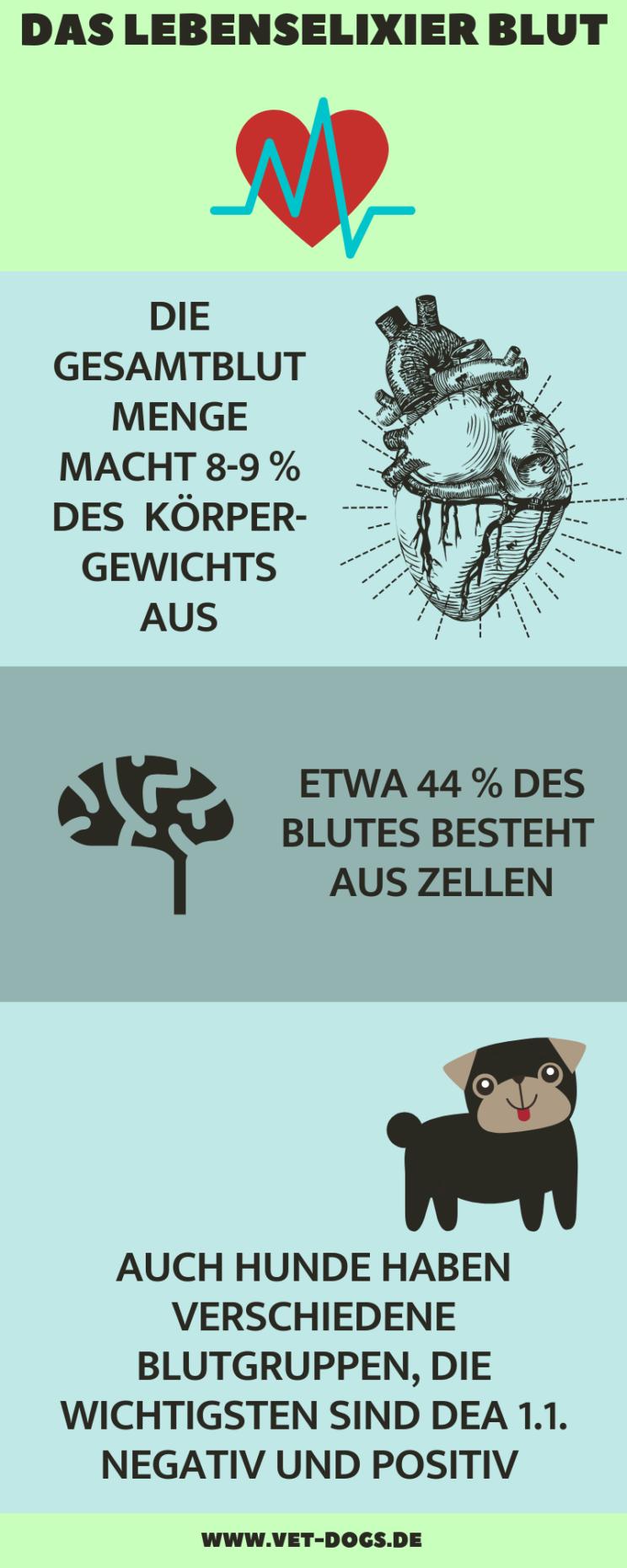 Das Bludbild deines Hundes, www.vet-dogs.de