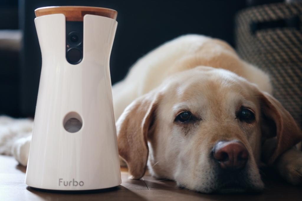 Furbo - Hundekamera unsere Langzeiterfahrung, www.vet-dogs.de,www.vetdogs.de