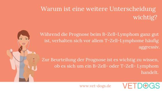 Lymphdrüsenkrebs (Lymphom) beim Hund, www.vetdogs.de, www.vet-dogs.de