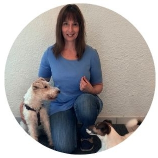 Pfotenakademie Ruhrgebiet Hundeschule, Tipps zur Arthrose beim Hund