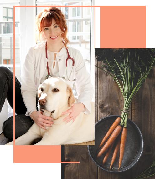 Anja Kruse, Dein online Tierarzt für eine Video Beratung und Ernährungsberatung