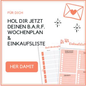 gratis Checkliste, Barf-Wochenliste und Barf Einkaufsliste