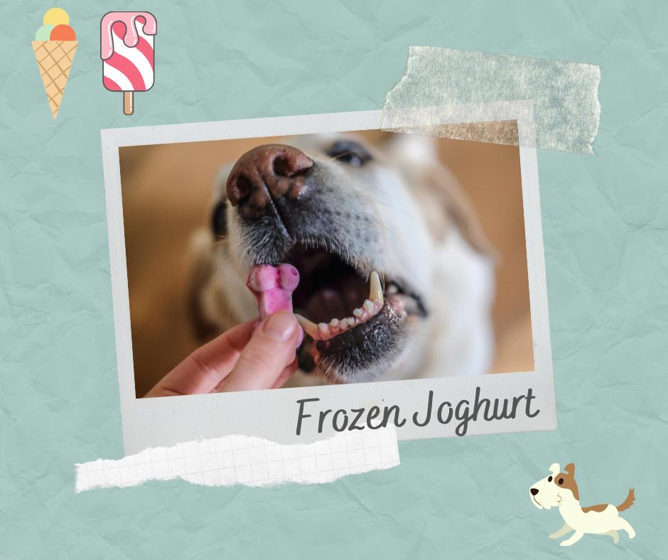 Hundeeis-Frozen-Joghurt-Hund
