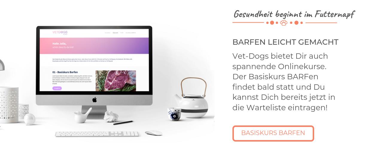 Blogbanner Basiskurs Barfen