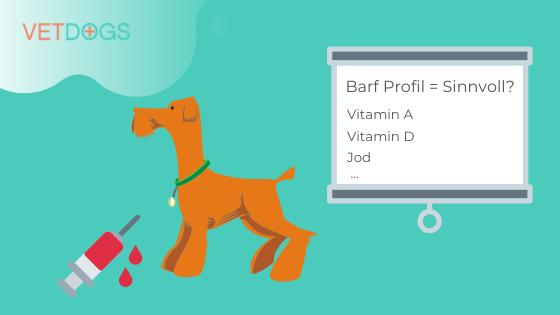 Barf-Profil-Sinnvoll_