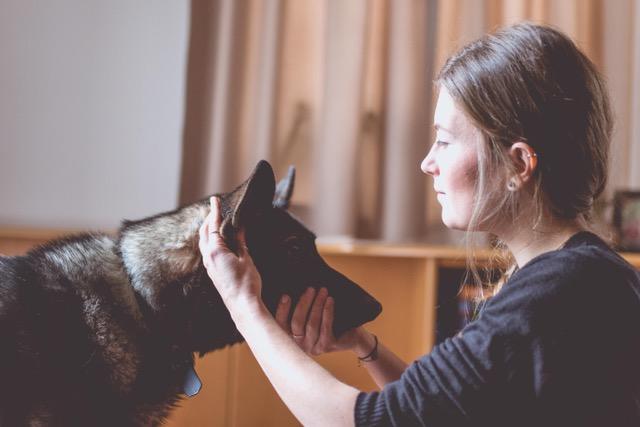 lisa-stolzlechner-so-verliert-dein-hund-die-angst-vor-dem-tierarzt