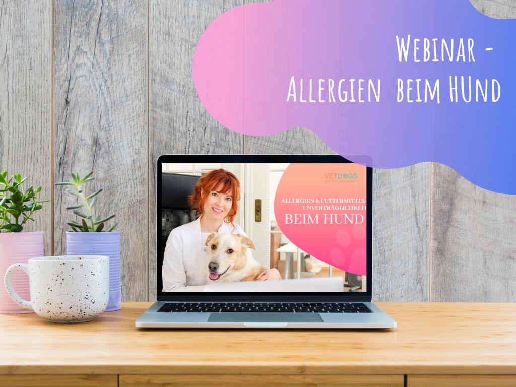 Webinar-Allergien-und-Futtermittelallergien-beim-hund