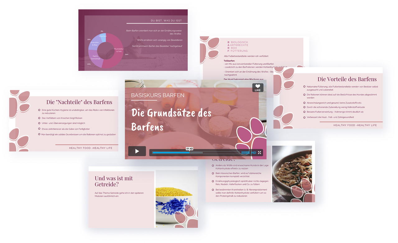 basiskurs-barfen-video-vorschau_small