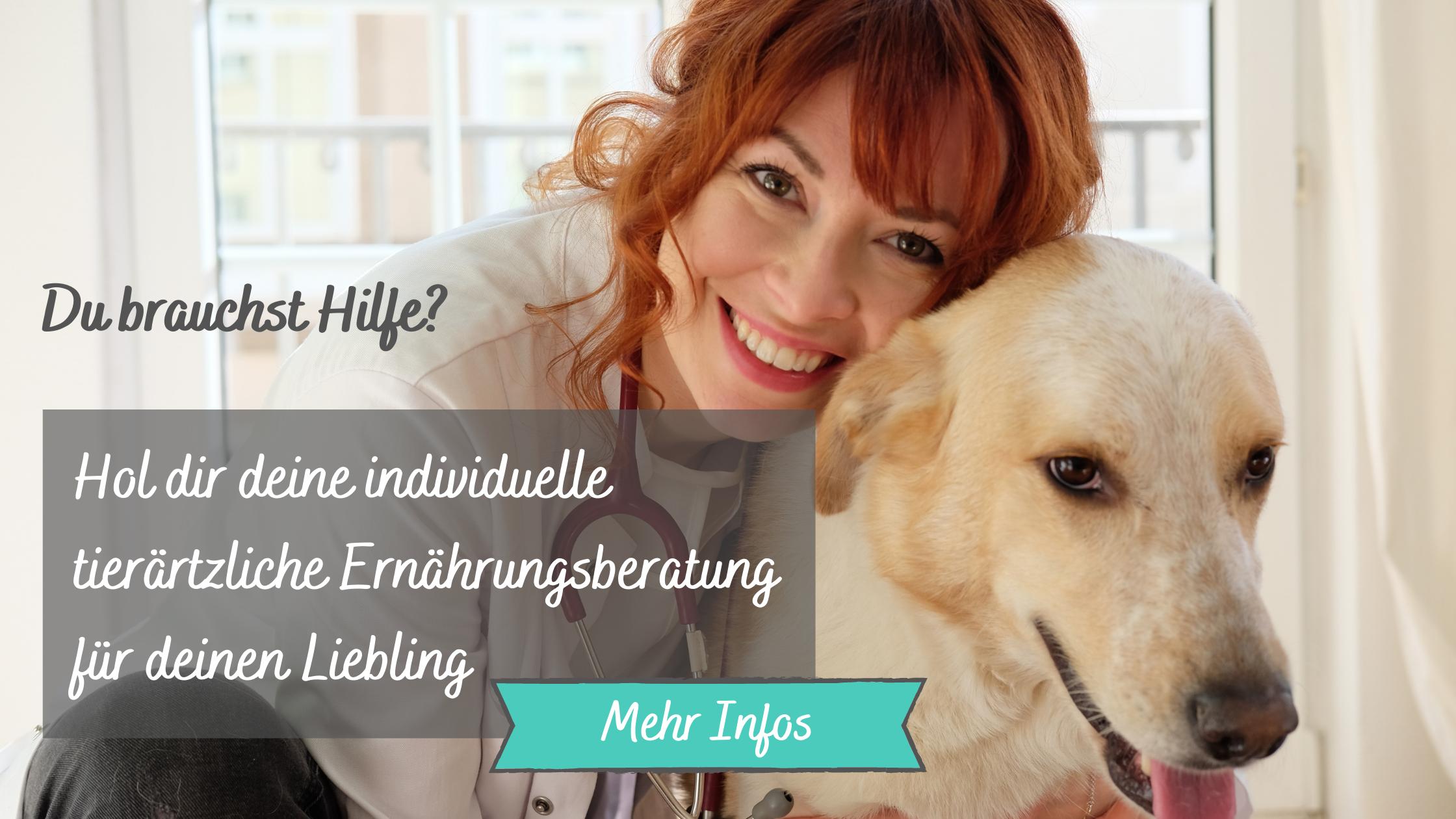 Deine-tierärztliche-Ernährungsberatung-für-deinen-Hund