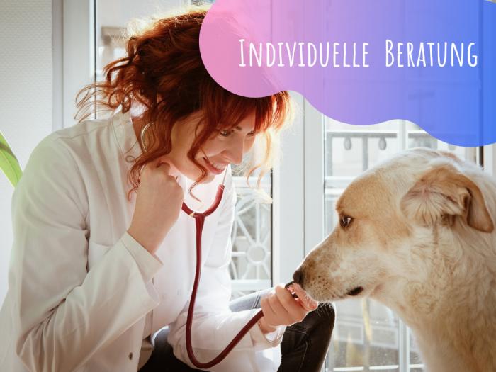 Ernährungsberatung-Tierarzt-BARF