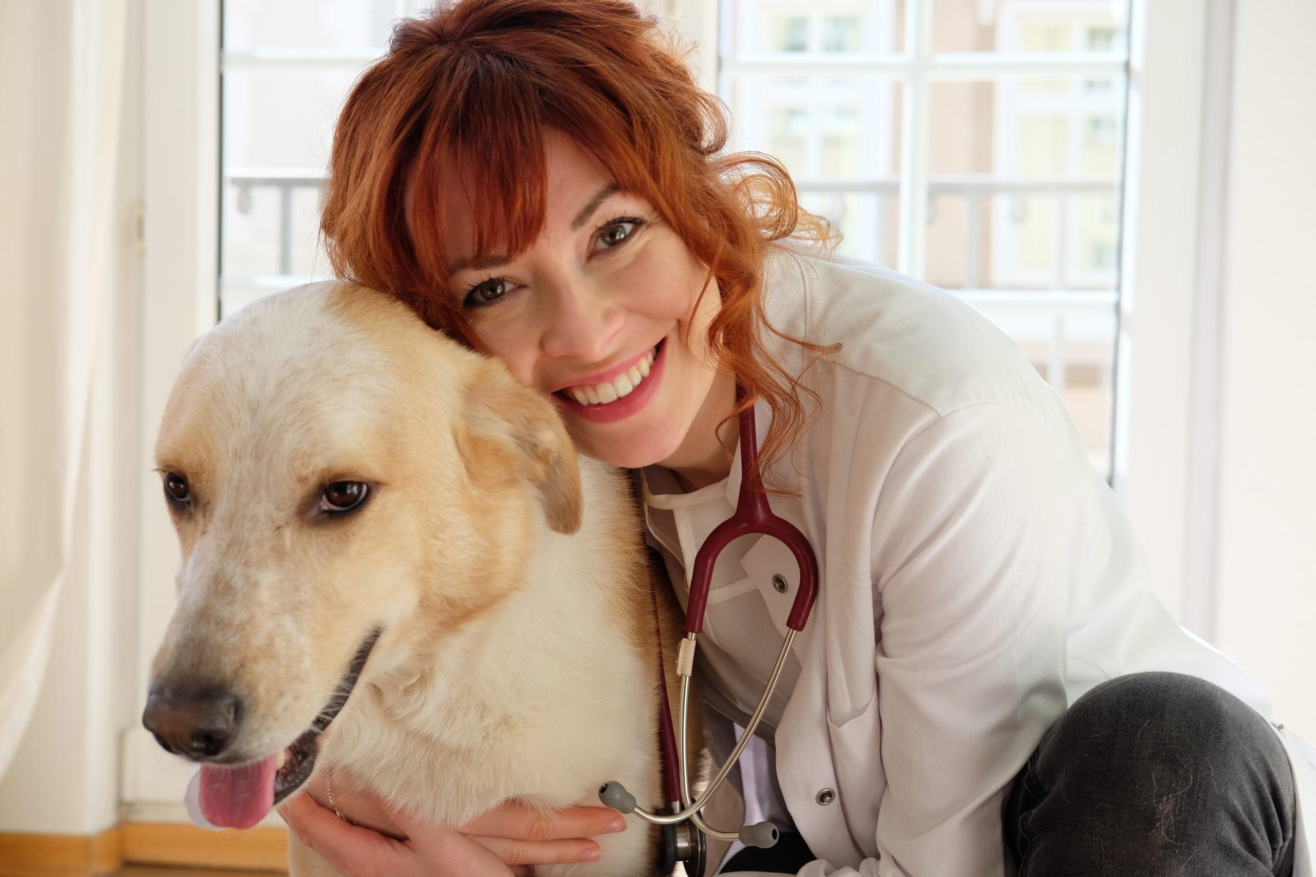 Online-Tierarzt-tierärztliche-Beratung-Vet-Dogs