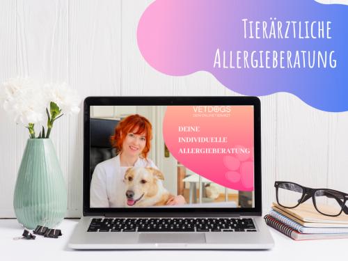 Tierarzt-beratung-online-Allergien-Futtermittelallergien