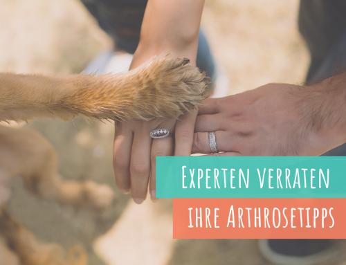 6 Experten verraten: Ihre persönlichen Tipps zur Arthrose-Behandlung