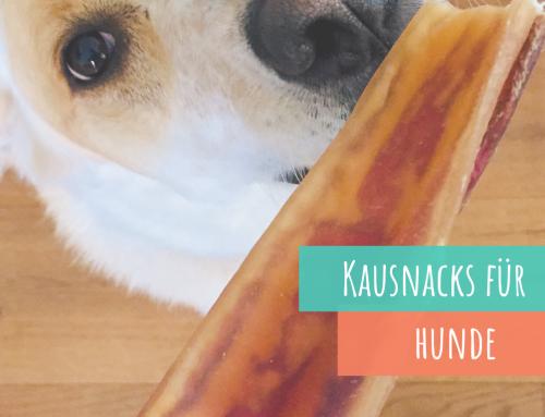 Kausnacks und Co.: Darauf solltest Du beim Kauf achten! Interview mit Friella Kauartikel