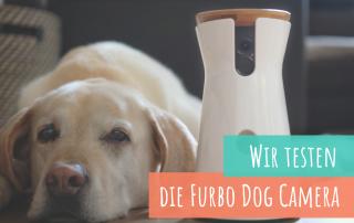 die-furbo-dog-camera