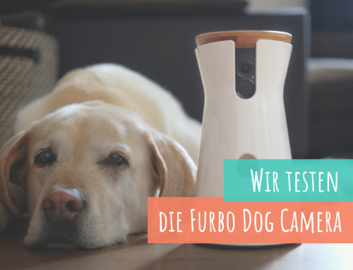 Produkttest: Always be together –Die Furbo Dog Camera*