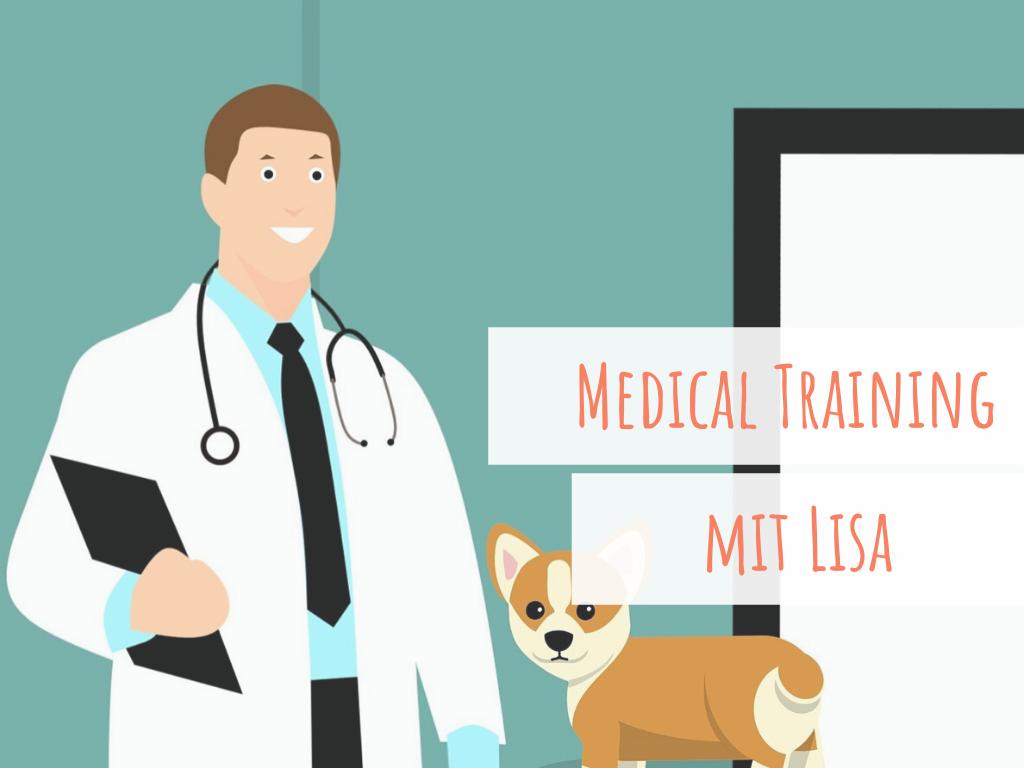 medical-training-angst-vor-dem-tierarzt