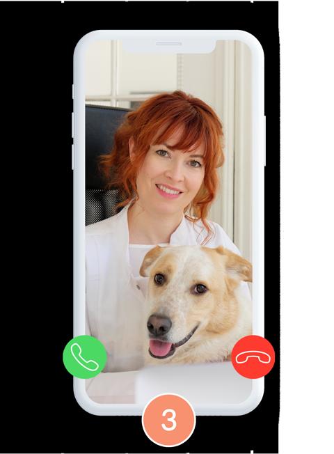 Anja-Kruse-Tierärztin-vet-dogs