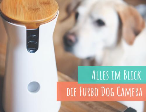 Die Furbo Hundekamera – Unsere Langzeiterfahrung*