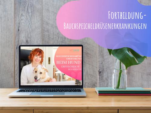 Online-Fortbildungen-Kurs-Bauchspeicheldrüsenerkrankungen-beim-Hund