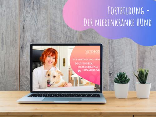 Online-Kurs-Fortbildung-Nierenkrankheiten-beim-Hund
